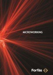 Microworking (PDF, 59 pages, 1106KB) - Forfás