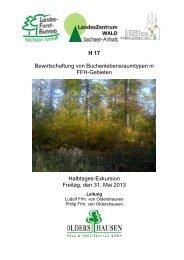 H17 - Deutscher Forstverein