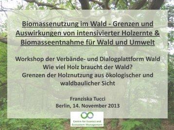Wälder - Forum Umwelt und Entwicklung