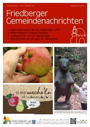 Download Ausgabe 6/2013 - Friedberg