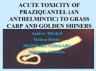 ACUTE TOXICITY OF PRAZIQUANTEL (AN ANTHELMINTIC) TO ...