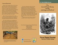 Great Dismal Swamp - U.S. Fish and Wildlife Service