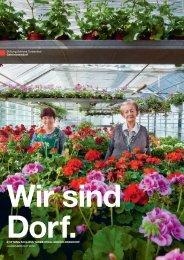 Geschäftsbericht 2012 - Stiftung Schloss Turbenthal