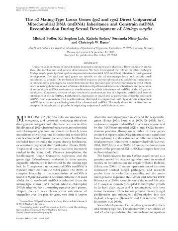 The a2 Mating-Type Locus Genes lga2 and rga2 Direct ... - Genetics