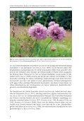 Schwermetallvegetation, Bergbau und Hüttenwesen im westlichen ... - Page 6