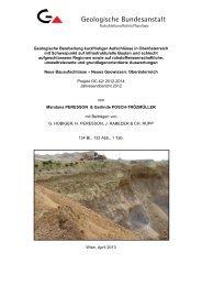 Projektbericht - Geologische Bundesanstalt