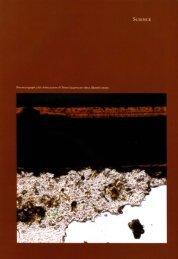 Urushi: Proceedings of the Urushi Study Group, June 1985 - The Getty
