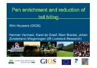 Pen enrichment and reduction of tail biting - GIQS