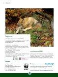 Download pdf - Gregor Louisoder Umweltstiftung - Page 4