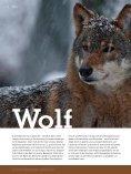 Download pdf - Gregor Louisoder Umweltstiftung - Page 6