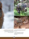 Download pdf - Gregor Louisoder Umweltstiftung - Page 7