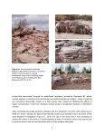 Potential Flagstone Resources - Gouvernement du Nouveau ... - Page 7