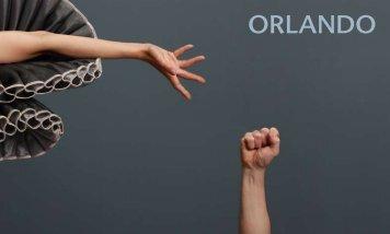 ORLANDO - A gömböc
