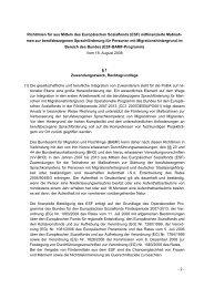 BMAS, Richtlinie vom 18. August 2008 (PDF, 46 KB) - Good Practice ...
