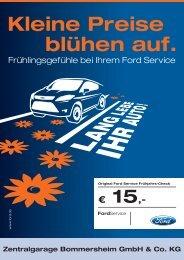 Kleine Preise blühen auf. - Zentralgarage Bommersheim GmbH ...