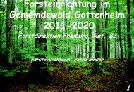 Forsteinrichtung Übersicht - Gottenheim