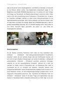 Juliane Schröter - GOzealand - Seite 3