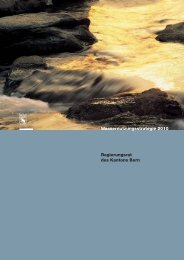 2010.9657-beilage-wassernutzungsstrategie-de - Grosser Rat ...