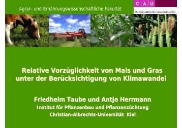 Relative Vorzüglichkeit von Mais und Gras unter der ...