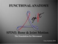 Spine Motion - Gray Institute