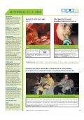 Ausgabe 11.qxd - Graz 2003 - Page 6