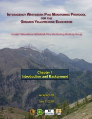 Chapter 1 Introduction and Background - Greater Yellowstone ...