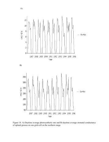 A) B) Figure 18. A) Daytime average photosynthetic rate and B ...