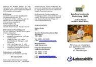 Berufsvorbereitende Einrichtung (BVE) - Bachschloss-Schule