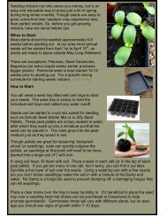 Seeding indoors not only saves you money, but is an easy and ...