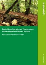 Zusammenfassung der Studie - Greenpeace Karlsruhe
