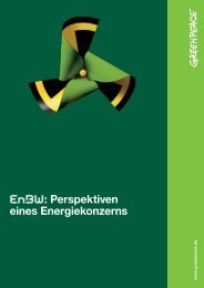 EnBW: Perspektiven eines Energiekonzerns - Greenpeace-Gruppe ...