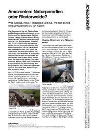 Naturparadies oder Rinderweide? - Greenpeace-Gruppe Stuttgart