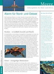 Alarm für Nord- und Ostsee - Greenpeace-Gruppe Stuttgart