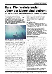Haie: Die faszinierenden Jäger der Meere sind bedroht