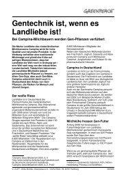 Gentechnik ist, wenn es Landliebe ist! - Greenpeace-Gruppe Stuttgart