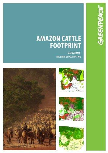 AMAZON CATTLE FOOTPRINT