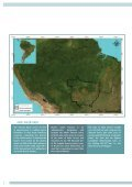 AMAZON CATTLE FOOTPRINT - Page 2