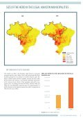 AMAZON CATTLE FOOTPRINT - Page 5