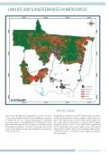 AMAZON CATTLE FOOTPRINT - Page 7
