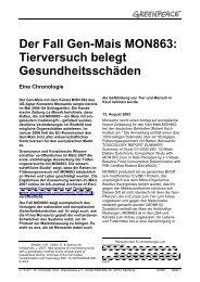 Der Fall Gen-Mais MON863: Tierversuch belegt Gesundheitsschäden
