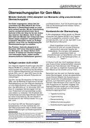 Monitoringplan für Gen-Mais - Greenpeace