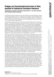 Zusammenfassung der Studie Erdgas und ... - Greenpeace