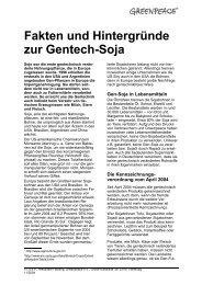Fakten und Hintergründe zur Gentech-Soja - Greenpeace