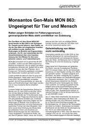 Monsantos Gen-Mais MON 863: Ungeeignet für Tier ... - Greenpeace