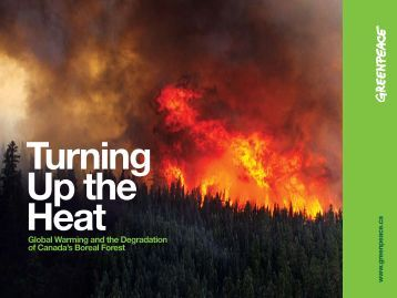 Boreal Forest - Greenpeace