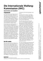 Factsheet, die IWC - Greenpeace