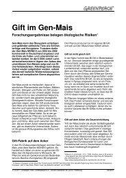 FS Gift im Gen-Mais 06_2007 - Greenpeace