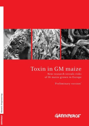 Toxin in GM maize - Greenpeace