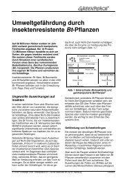 Umweltgefährdung durch insektenresistente Bt ... - Greenpeace