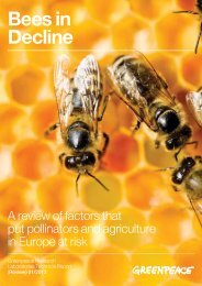 Bees in Decline - Greenpeace